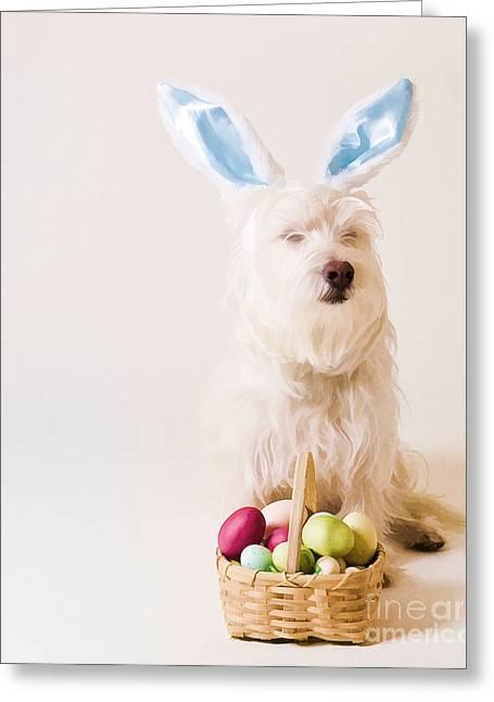Easter Bunny Westie Greeting Card by Edward Fielding