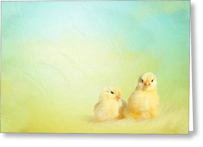 Easter Chicks Greeting Card by Heike Hultsch