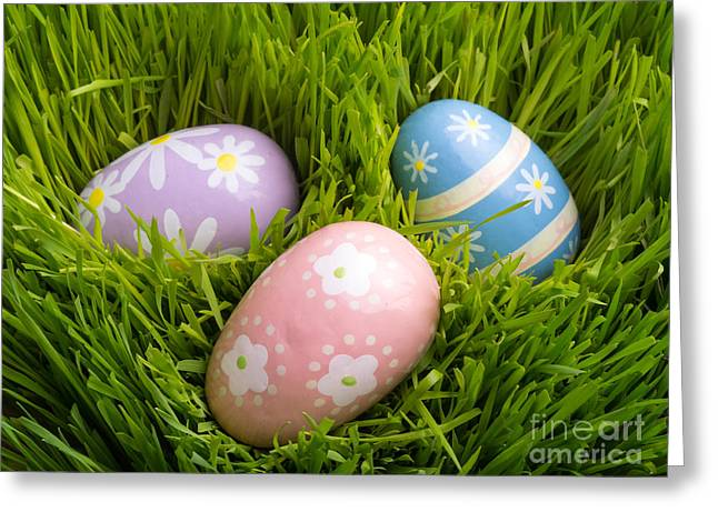 Easter Eggs In The Grass Greeting Card by Edward Fielding