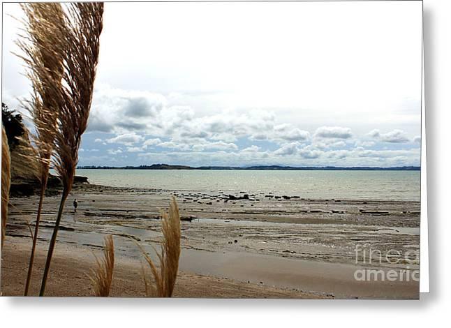 Eastern Beach Before Cyclone Lusi Greeting Card