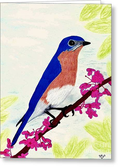 Greeting Card featuring the drawing Florida - Eastern - Blue Bird by D Hackett