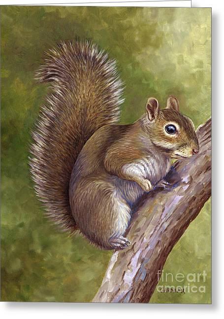 Eastern Gray Squirrel Greeting Card by Catherine Garneau