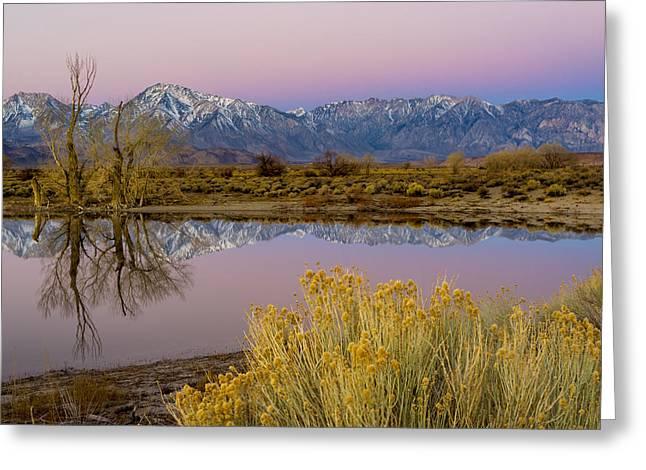 Eastern Sierra Dawn Greeting Card by Joe Doherty