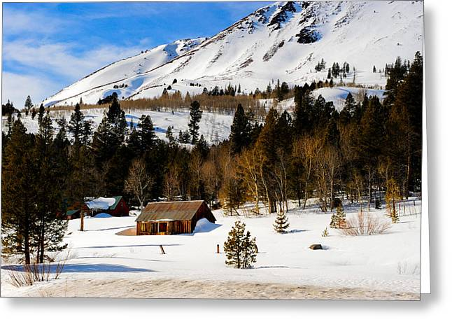 Eastern Slope Cabin Greeting Card