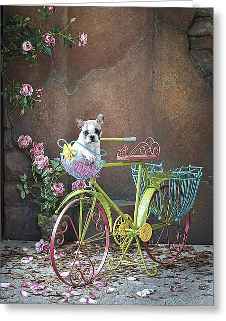 Easy Rider Greeting Card by Lisa Jane