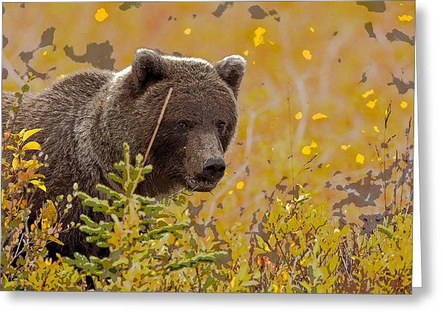 Eating In The Beauty Of Autumn- Abstract Greeting Card