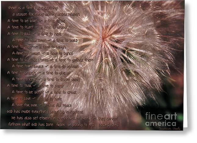 Ecclesiastes Seasons Greeting Card by Constance Woods