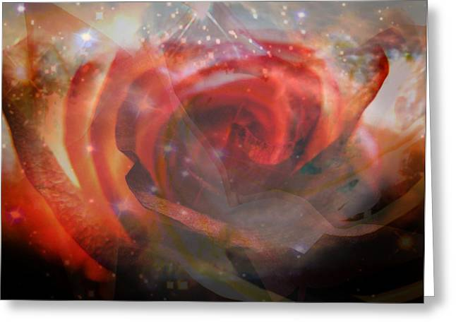 Echoes Of The Rose Greeting Card by Judy Paleologos