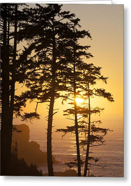 Ecola Point Sunset Greeting Card by Greg Vaughn