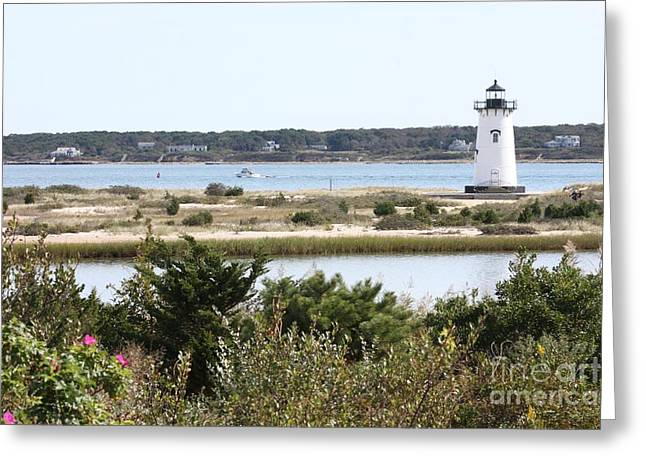 Edgartown Lighthouse With Wildflowers Greeting Card by Carol Groenen