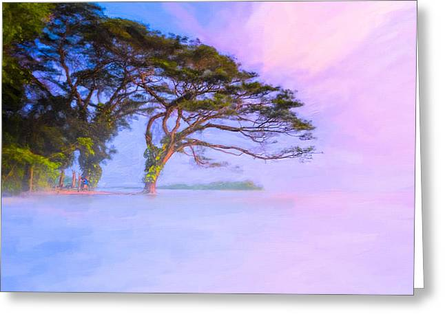 Edge Of A Dream - Lake Nicaragua Landscape Greeting Card by Mark E Tisdale