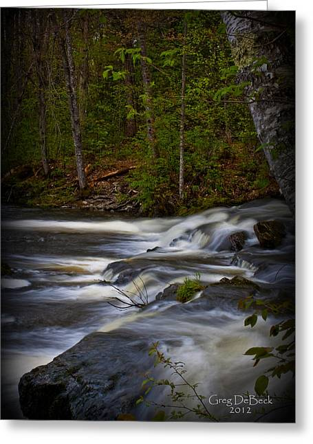Edge Of The Stream Greeting Card by Greg DeBeck