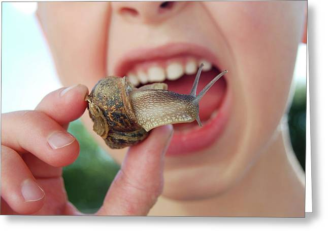 Edible Snail Greeting Card by Public Health England