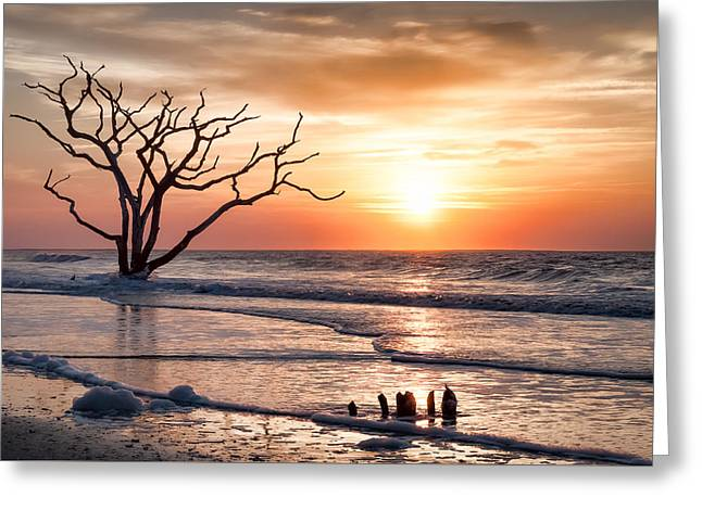 Edisto Sunrise Greeting Card by Curtis Cabana