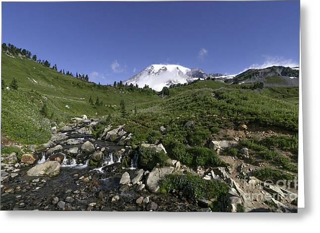 Edit Creek Basin Greeting Card
