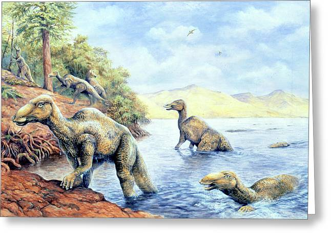Edmontosaurus Dinosaurs Greeting Card