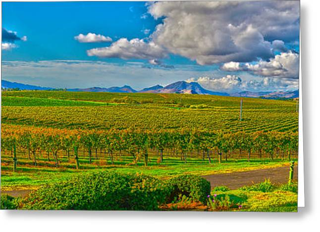 Edna Wineries Ca Greeting Card