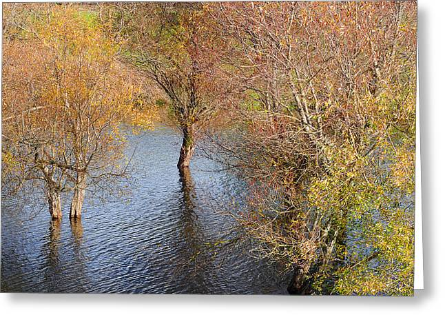Eel River Deux Greeting Card