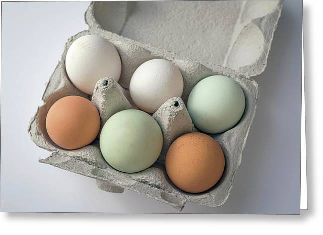 Egg Pigmentation Greeting Card