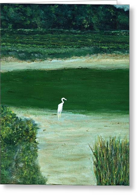 Egret Greeting Card by David Nichols