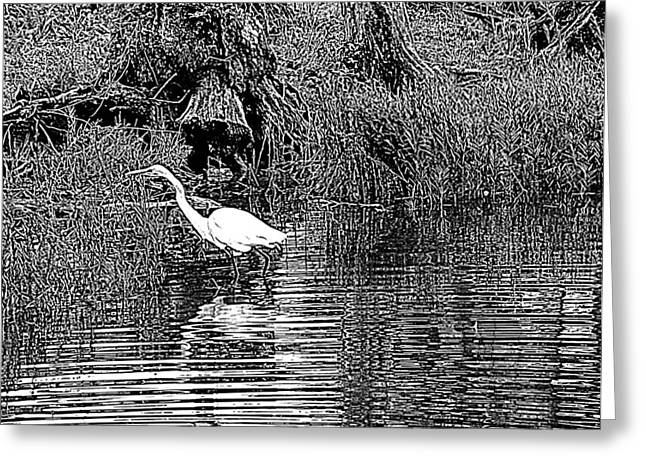 Egret On The Move Greeting Card