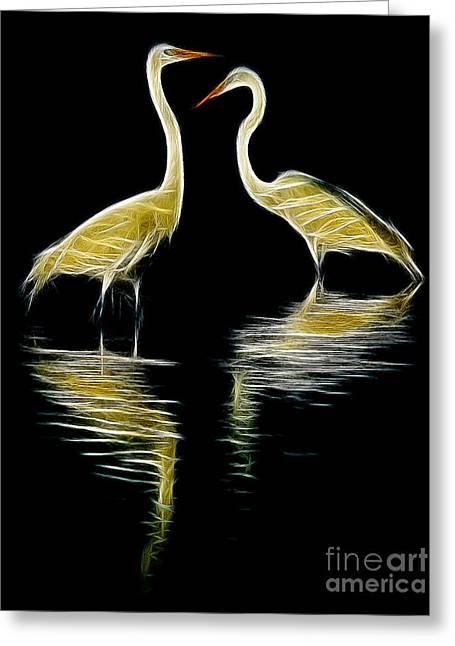 Egret Pair Greeting Card by Jerry Fornarotto