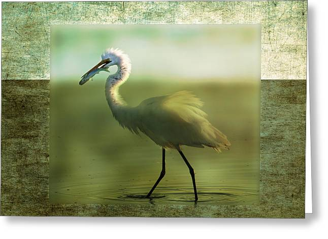 Egret With Fish Greeting Card