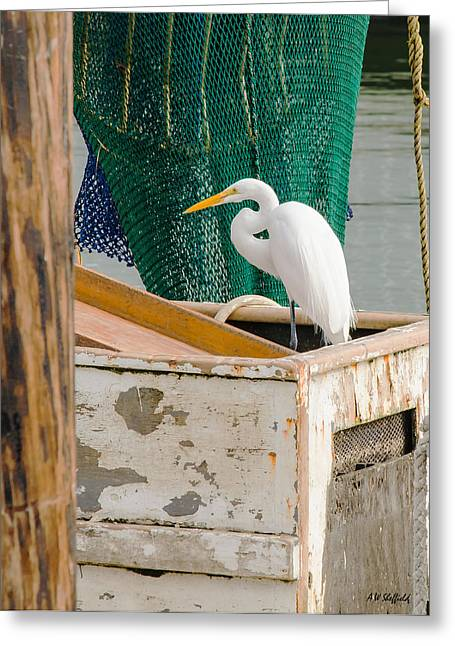 Egret With Fishing Net Greeting Card