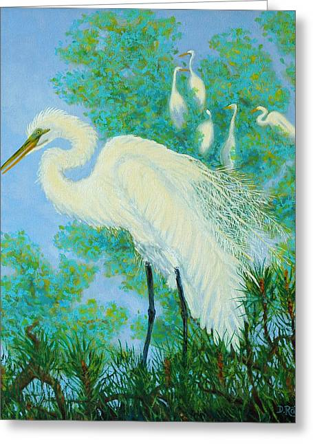 Egrets In Rookery - 20x16 Greeting Card by Dwain Ray