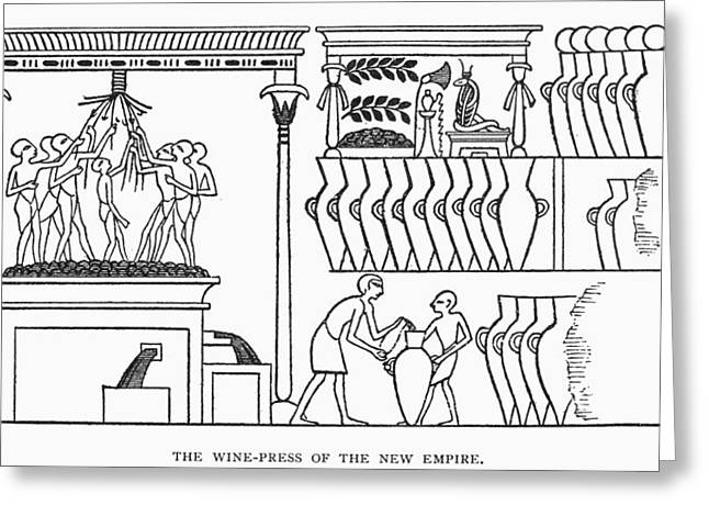Egypt Winemaking Greeting Card by Granger