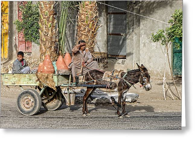 Egyptian Donkey And Cart Greeting Card by Linda Phelps