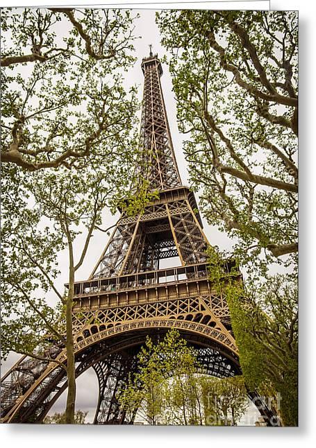 Eiffel Tower Greeting Card by Carlos Caetano
