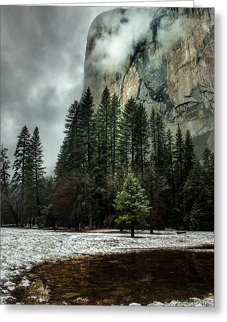 El Capitan Seen From The Valley Meadows Greeting Card by Tom Norring