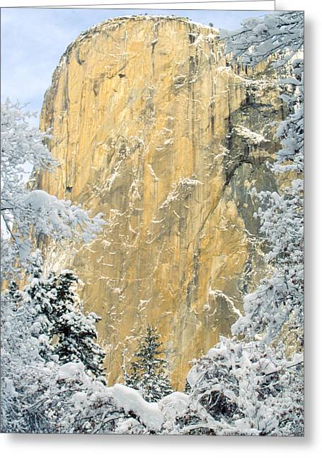 El Capitan With Snowy Trees Greeting Card