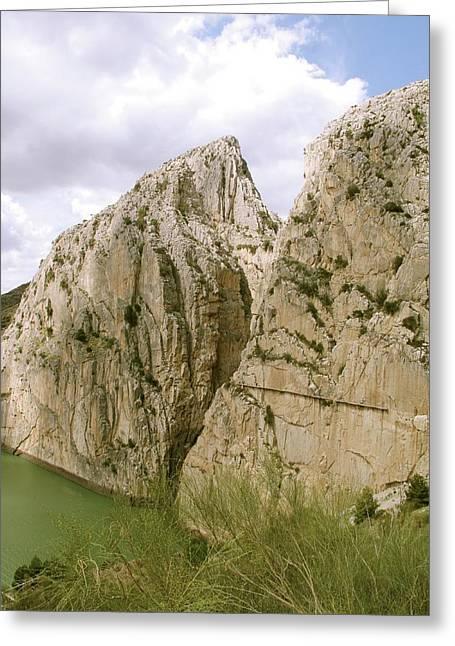 El Chorro Gorge Greeting Card by Cordelia Molloy
