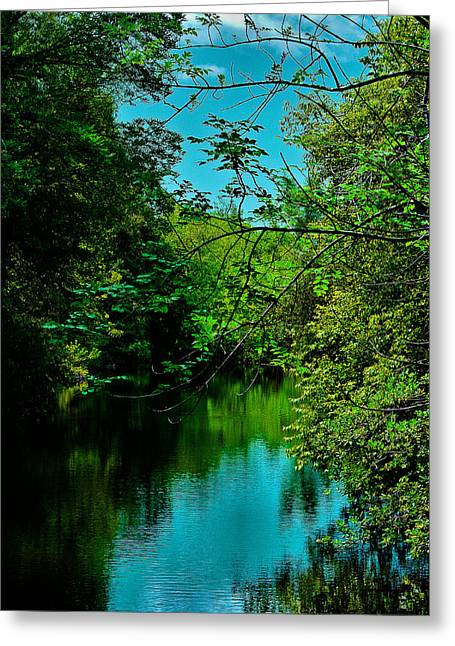 Greeting Card featuring the photograph El Dorado Park Lake View by Joseph Hollingsworth
