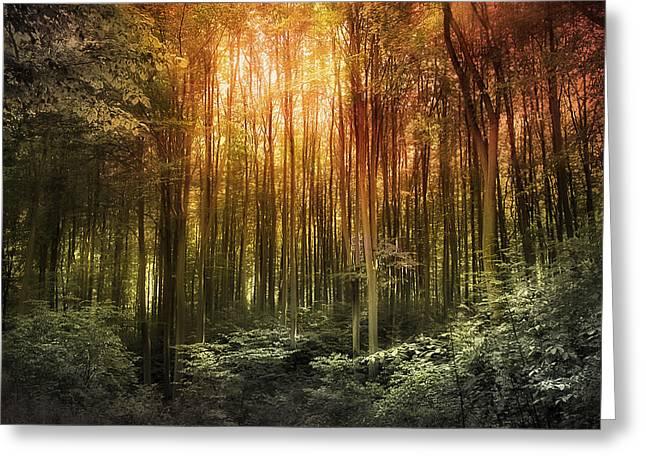 El Paradiso Mio - Awakening Spiritual Landscape Greeting Card
