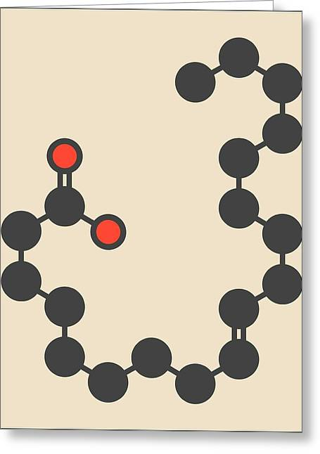 Elaidic Acid Molecule Greeting Card