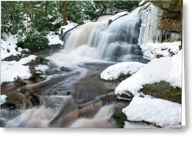 Elakala Falls #2 D30013234 Greeting Card by Kevin Funk