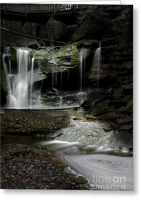 Elakala Falls On The Elakala Trail Greeting Card by Dan Friend