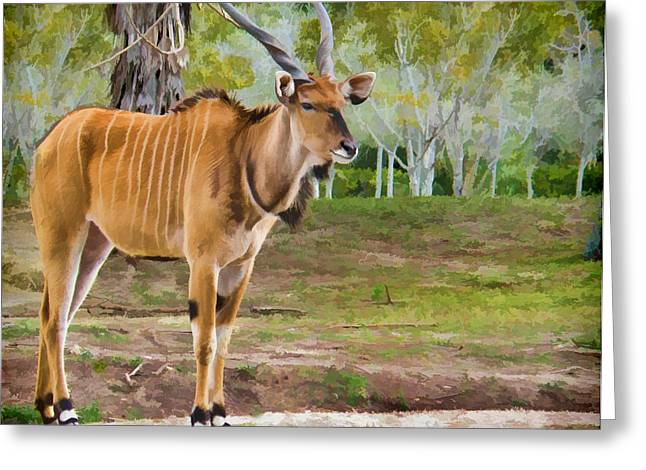 Eland Greeting Card by Grace Dillon