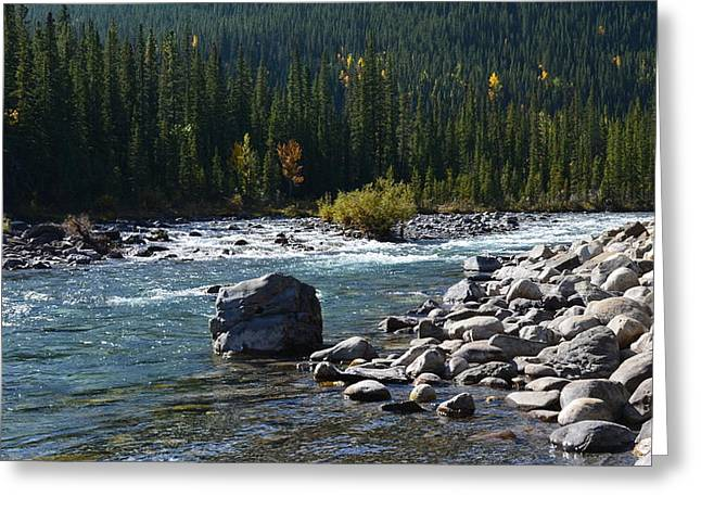 Elbow River Rock Art Greeting Card by Cheryl Miller