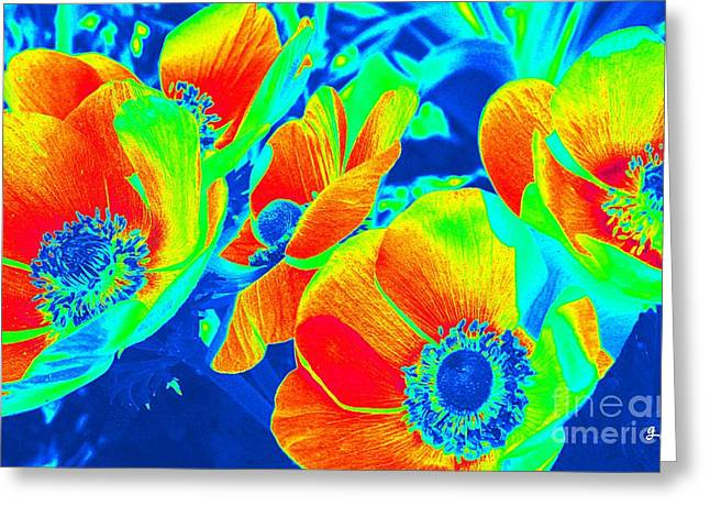 Electric Floral Greeting Card by Geri Glavis