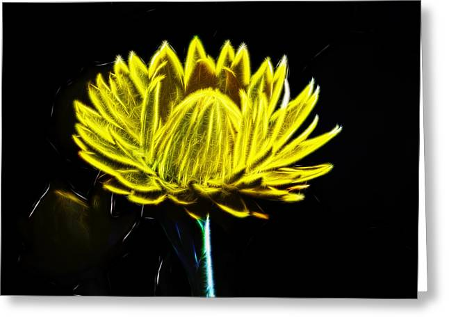 Electric Yellow Greeting Card by Photographic Art by Russel Ray Photos