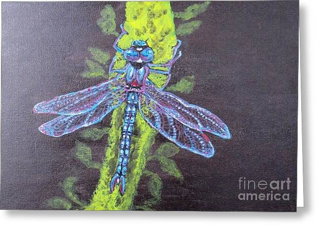Electrified Blue Dragonfly Greeting Card by Kimberlee Baxter