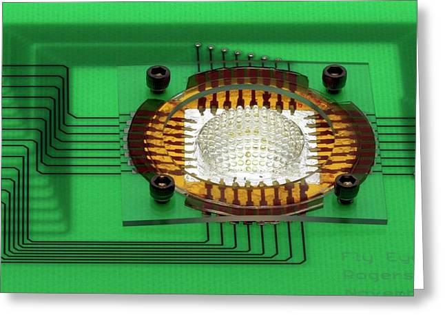 Electronic Compound Eye Camera Greeting Card by Professor John Rogers, University Of Illinois