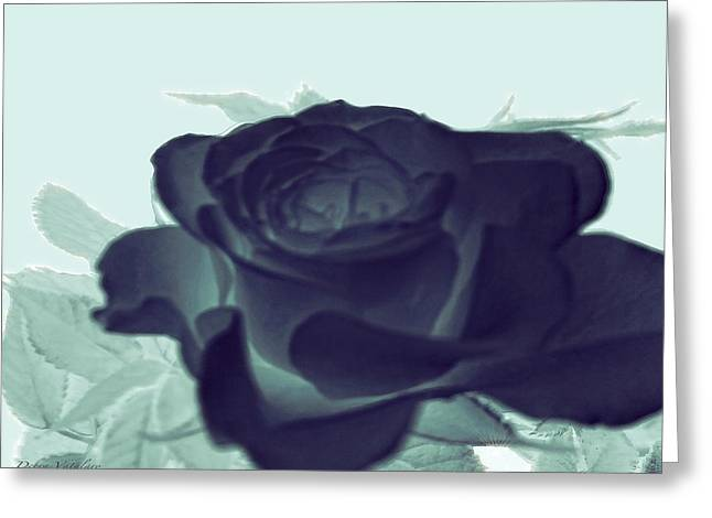 Elegant Black Rose Greeting Card by Debra     Vatalaro