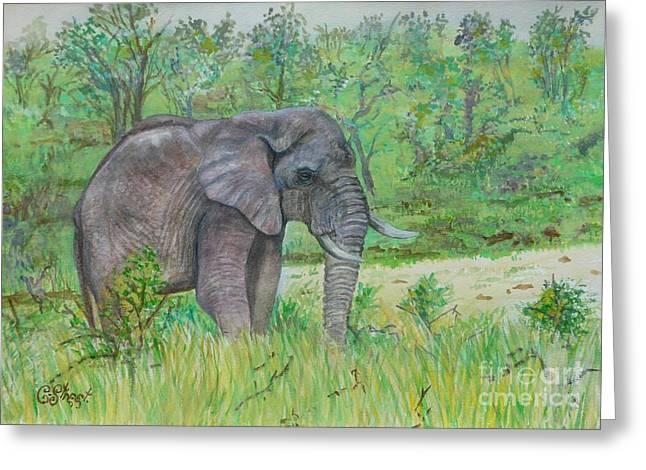 Elephant At Kruger Greeting Card by Caroline Street
