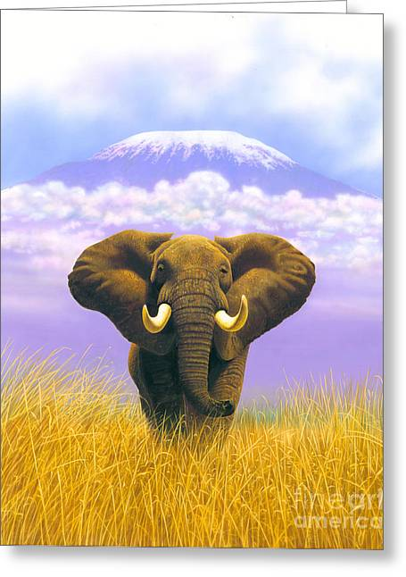Elephant At Table Mountain Greeting Card by MGL Studio - Chris Hiett