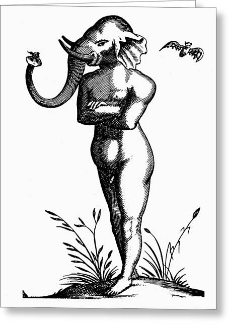 Elephant-headed Man, 1616 Greeting Card by Granger